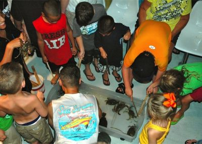 Kids checking out sea creatures